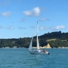 TROUBLE MOORING AT LITTLE BUCKLANDS BEACH - last post by DBLRUM