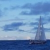 Experienced crew avaliable: Gold cup, White Island, etc - last post by -Paul-